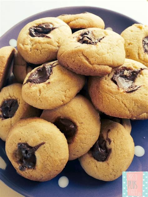 10 Minute chocolate drop cookie recipe in the Thermomix