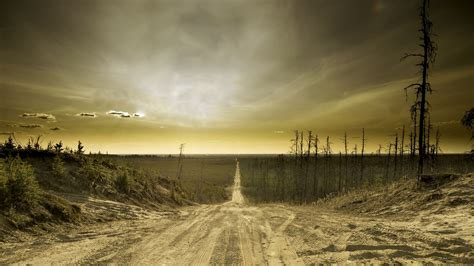 What Are the Seven Signs of the Apocalypse? | Reference